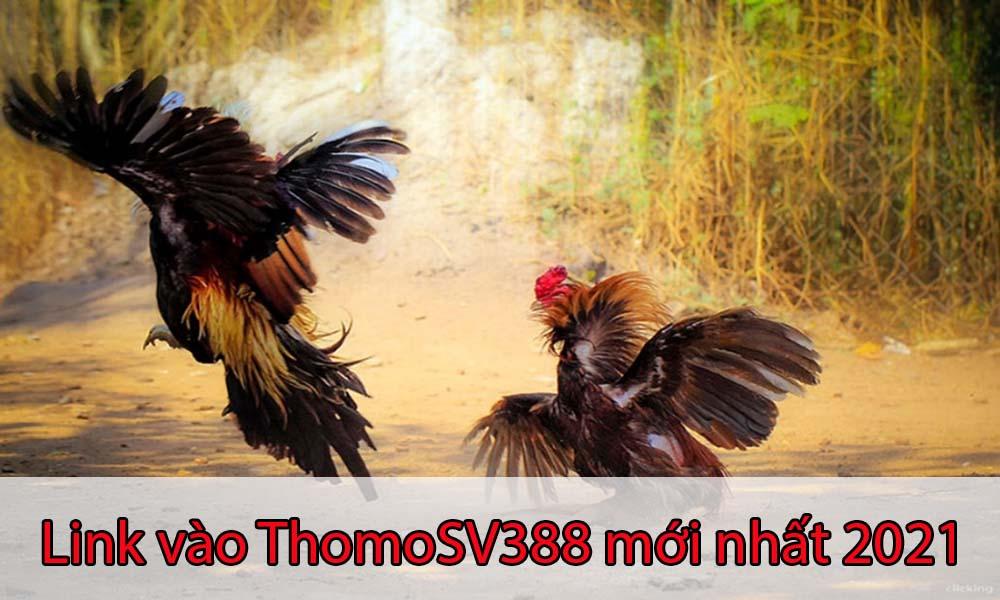 Link đăng nhập vào ThomoSV388