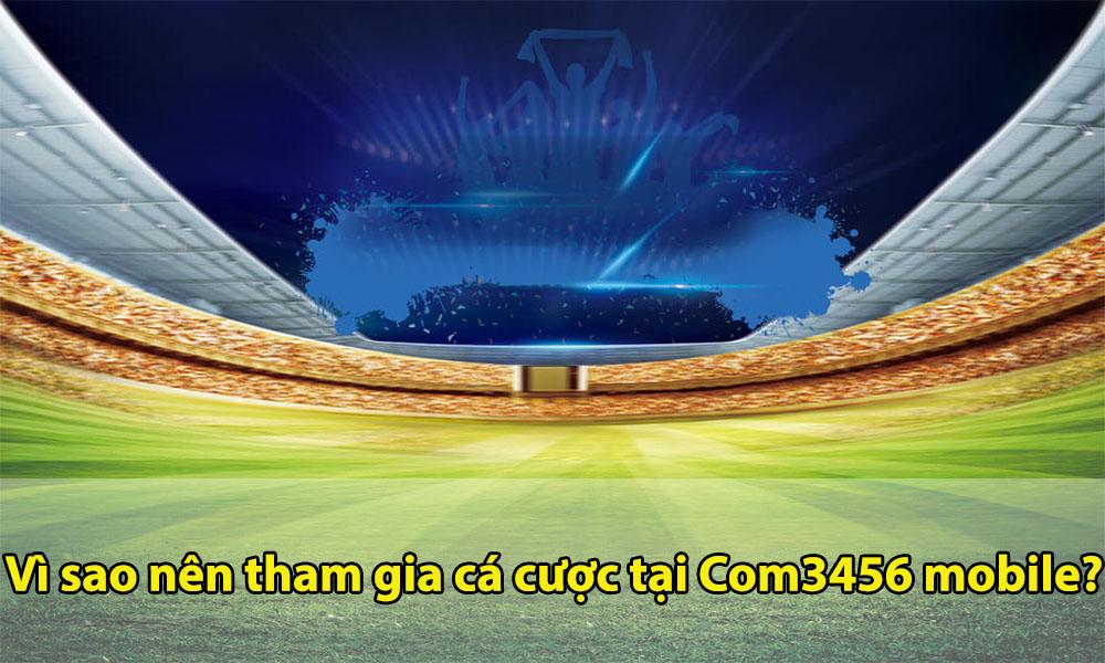 Tham gia cá cược uy tín tại Com3456 mobile