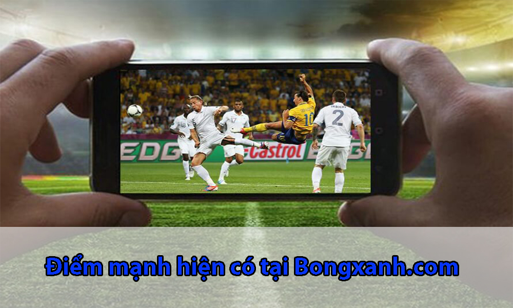 Điểm mạnh hiện có tại Bongxanh.com